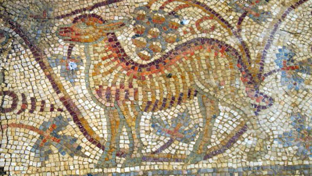 Animal from the Mosaic floor
